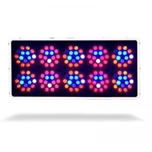 Kind LED K3 L600 Bottom Illuminated